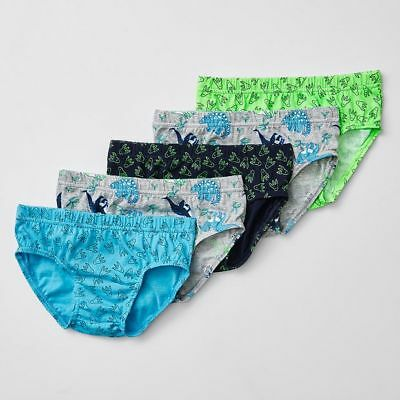 NEW 5 Pack Dinosaur Briefs Kids