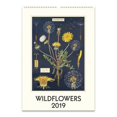 Cavallini Papers & Co. Wildflowers 2019 Wall Calendar, Multicolour