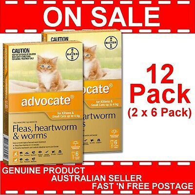 Advocate for Kittens and Small Cats Orange Up to 4kg 12 Pack (2 x 6 Packs)