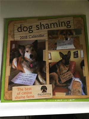DOG SHAMING 16-Month 2018 CALENDAR Brand New FREE SHIPPING