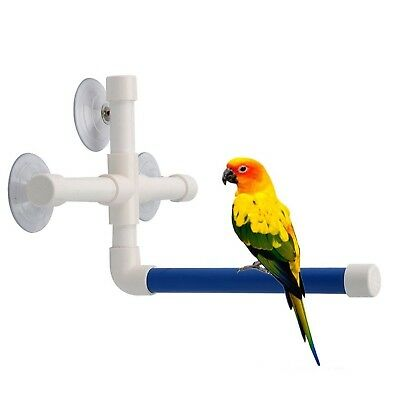 African Macaw Gre Bird Bath Perch Suction Cup Shower Perch Stand For Bird Parrot