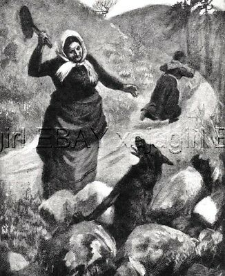 WOLF Woman Fights Off Wolf Frying Pan, 95-yr-old Print