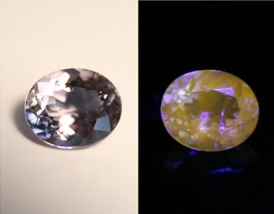 2.5ct Tanzanian Violet Scapolite - Rare Gem - Fluorescent Yellow Clean Cut Gem
