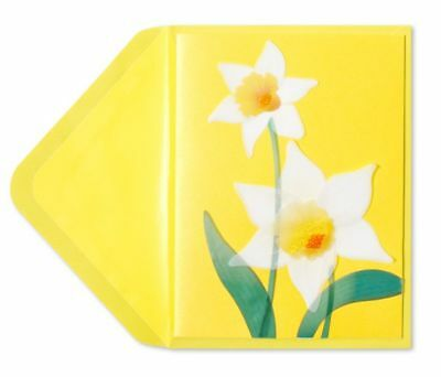 PAPYRUS Greeting Cards BLANK Handmade Elegant Beautiful YELLOW DAFFODILS