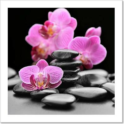 Orchid Art Print Home Decor Wall Art Poster - G