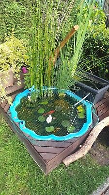 Pond Outdoor  Plastic Wooden Fish Pool