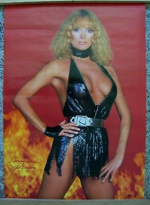 Rare vintage SYBIL DANNING poster - pin up - copyright 1984 - New in sleeve