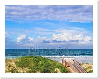 Ocean Beach Dunes Art Print Home Decor Wall Art Poster - H