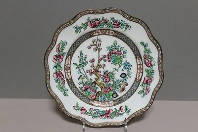 Coalport England China Indian Tree Multicolor Older Scalloped Edge Dinner Plate