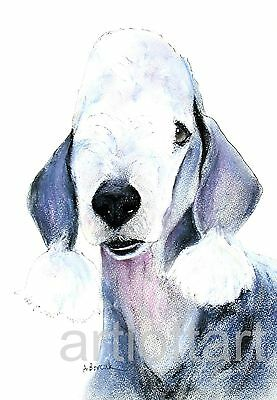 BEDLINGTON TERRIER  DOG  Art Print  SIGNED  A Borcuk  PAINTING 8x10