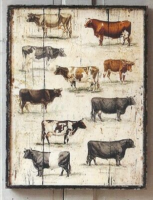 COW CATTLE Breeds Picture Framed ART Antique Farmhouse like Vintage Wood Panels