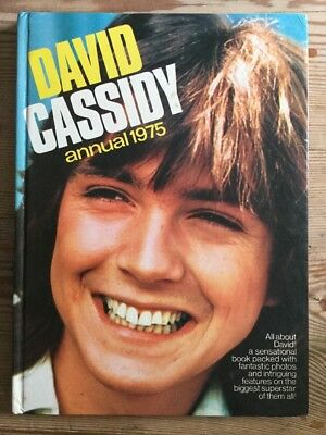 David Cassidy Annual 1975 The Rarer Vintage Annual