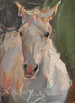 ACEO ART original oil painting horse animal impressionist by x.thomas