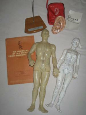 Soft Human Female, Male & Ear Acupuncture Meridian Chi Models Teaching Tools