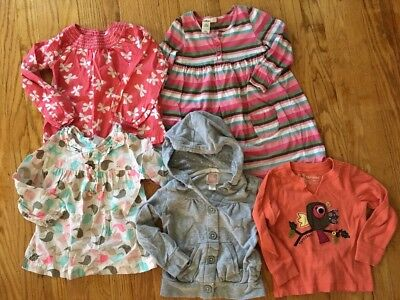 Lot Of Girls Clothes Size 3T Fall