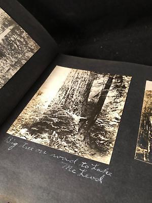 AMAZING Big Trees & DOWNTOWN Seattle WA 1920's PHOTOGRAPH ALBUM 115+ Photos