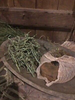 Primitive Dried Green Bean Garland Leather Britches Early Look Homestead