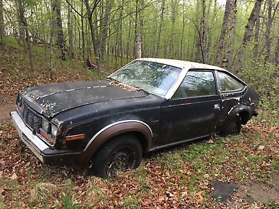 1983 AMC EAGLE  AMC 1983 EAGLE 2 DOOR HATCHBACK----4x4