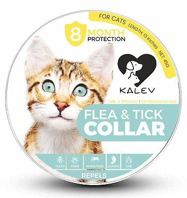 Flea And Tick Collar For Cats - Vet Recommended 8 Month Protection Large/Small