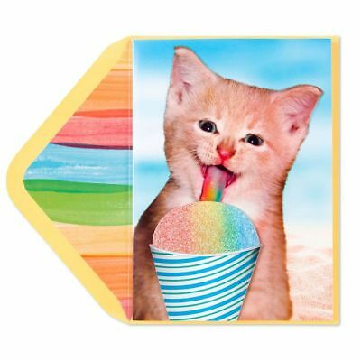 PAPYRUS Greeting Cards BLANK Handmade Unique Cute Unique Sweet Cat Snow Cone
