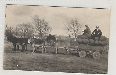 Vintage Postcard     The Donkey Team  Sale Victoria Real Photo  1909