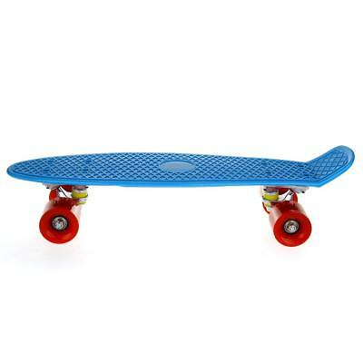 Retro Fish Style Skate board Complete Deck Mini for Young People Blue 22inch