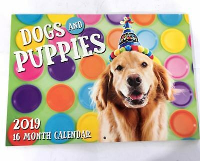 2019 Calendar Rectangle Wall Calendar 16 Months Dog & Puppy Pet Animal Puppies