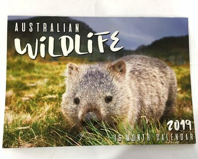 2019 Calendar Rectangle Wall Calendar 16 Months Australian Animal Wildlife