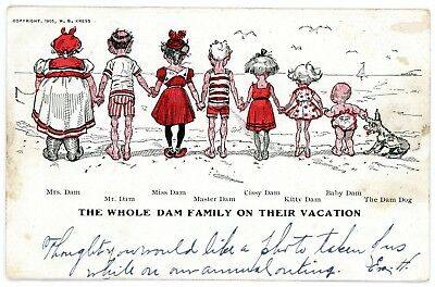 """Antique Comic Greetings """"the Whole Dam Family..."""" Undivided Postcard 1905 Cancel"""