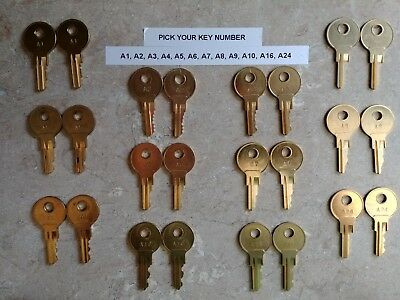 Pair of A1-A24 Cash Drawer Keys for NCR, MICROS, APG, HP, Dell, Radiant / Aloha