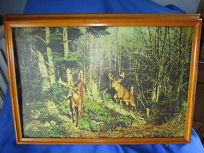 Vintage Helmscene Lighted Wildlife Picture. Excell Condition. Mfg'd Modern Decor