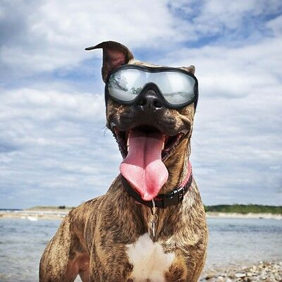 Dog Goggles Pet Waterproof Sunglasses for Medium to Large Dogs