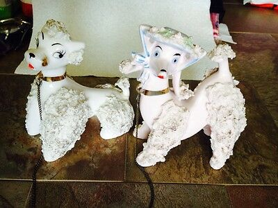 2 Vtg porcelain whipped Cream Big Poodle dog gold accent Spaghetti Show cut Set