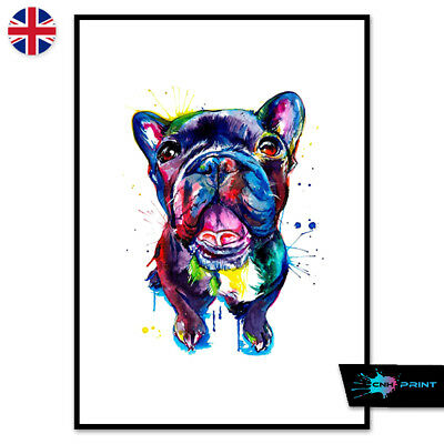 Watercolour French Bulldog Poster Print A4 A3 Wall Art Decor 1411