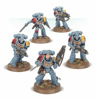 Warhammer 40K Tooth and Claw Space Wolves 5 Primaris Intercessors NEW PRE-ORDER