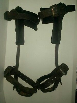 Vintage Buckingham Lineman Pole Tree Climbing Steel Gaffs Spikes Spur Adjustable