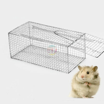 Humane Rat Mouse Trap Cage Live Safe Animal Pest Mice Galvanised Mesh Wire Catch
