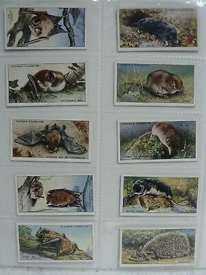 John Player And Sons Cigarette Cards Animals Of The Country Side Complete Set