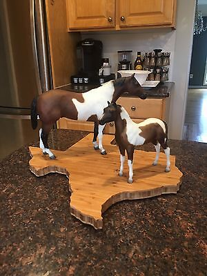 Breyer 1998 Sears SR Legacy Gift Set Stud Spider  & Stock Horse Foal