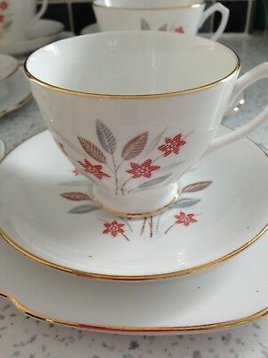 Vintage Windsor Bone China 18 Piece Tea Set