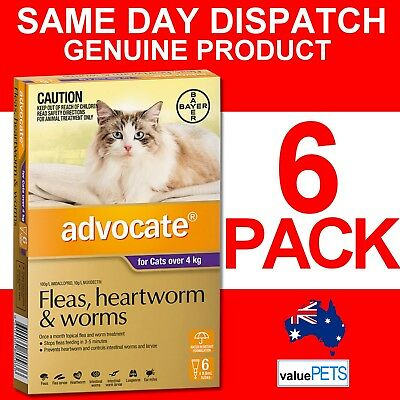 Advocate Purple 6 Pack for Cats Over 4kg Heartworm Flea Prevention