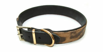 Lince Leather Collar Lince 25mm X 65cm
