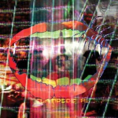 Animal Collective: Centipede HZ (2-LPs: 150GV)