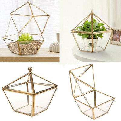 Greenhouse Star Glass Tabletop Plant Box Pot For Succulents Ferns Mosses Planter