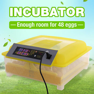 48 Digital Egg Incubator Automatic Hatcher Temperature Digital Control Chicken