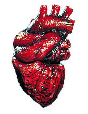 Morris Costumes Meat Market Heart Body Parts Small Decorations /& Props FT13623