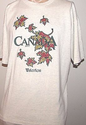 TRUE VINTAGE 1980's-90's CITYSCAPE, WATERTON CANADA T-SHIRT EXTRA LARGE GRAY