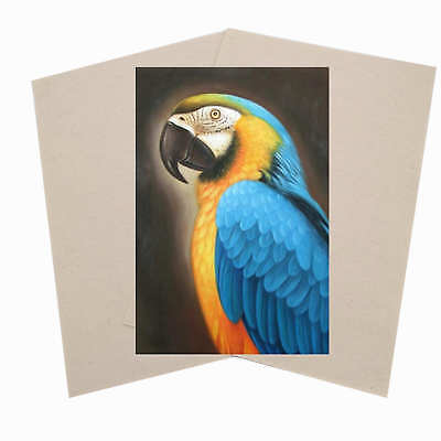 Cotton Canvas Inkjet Printers Waterpoor 370gsm Art 10x A4 Sheets Photo Printable
