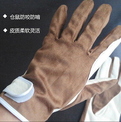 Sheep Leather Pet Thickened Short Gloves Protect Animal Snake Anti-bite/stab