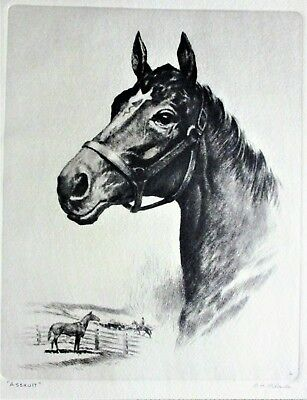 19Th C. Engraving By R, T, Pelenske Thoroughbred Assault In Fine Condition